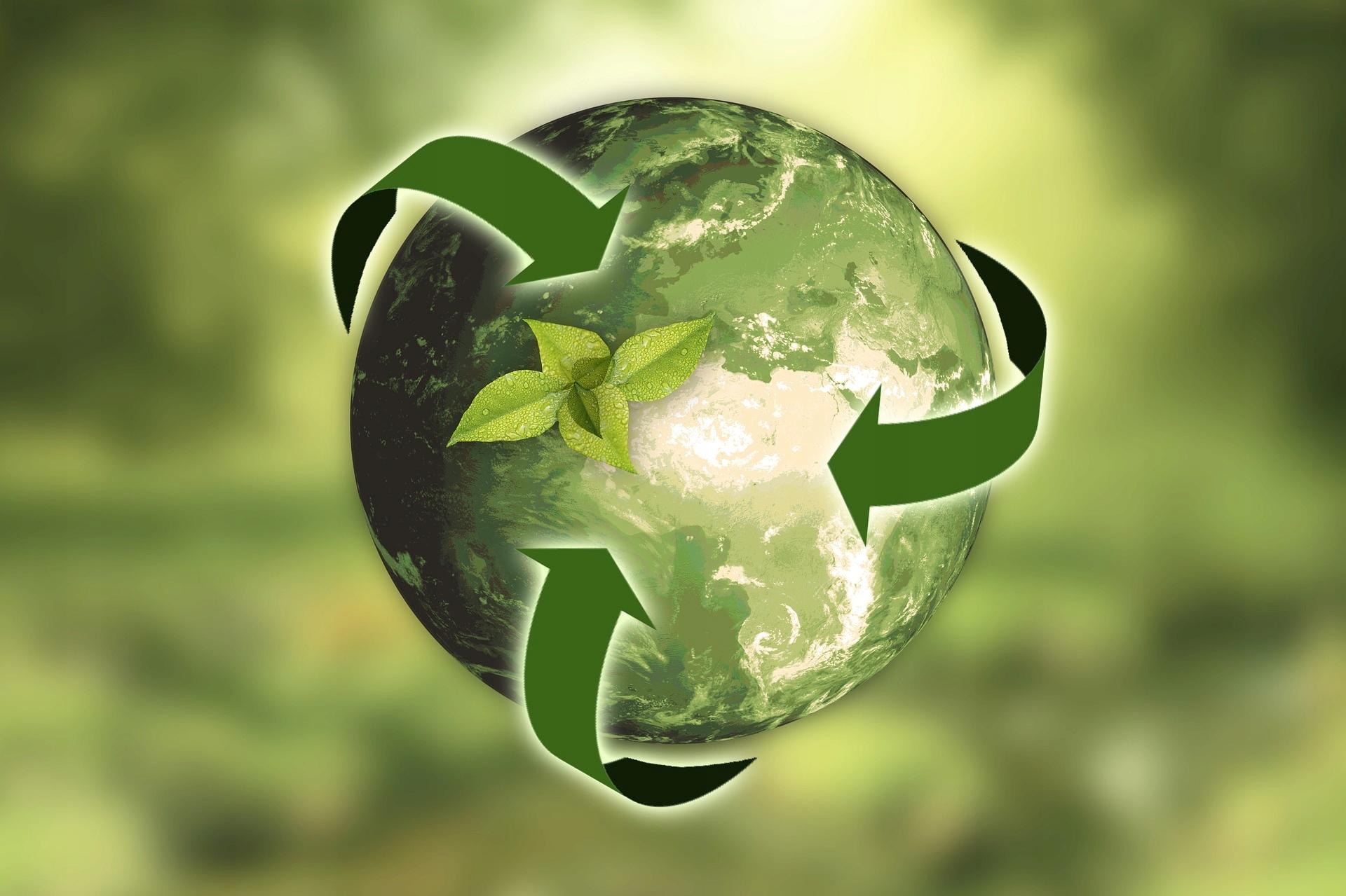 Pojemnik na odpady organiczne RECYKLING BioBag 6 l Marka BioBag