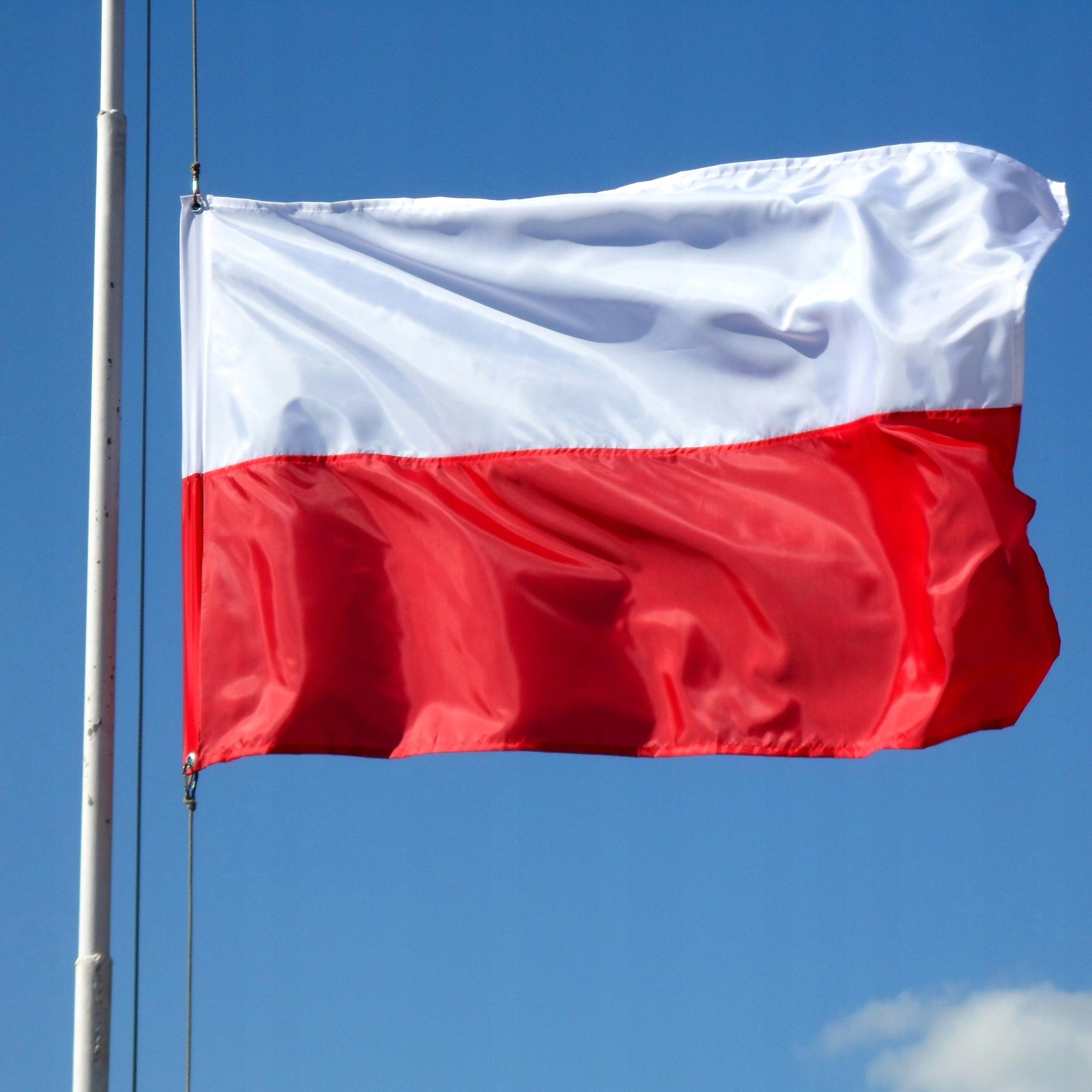 Польский национальный флаг 90 х 150 см на полюсе (2)