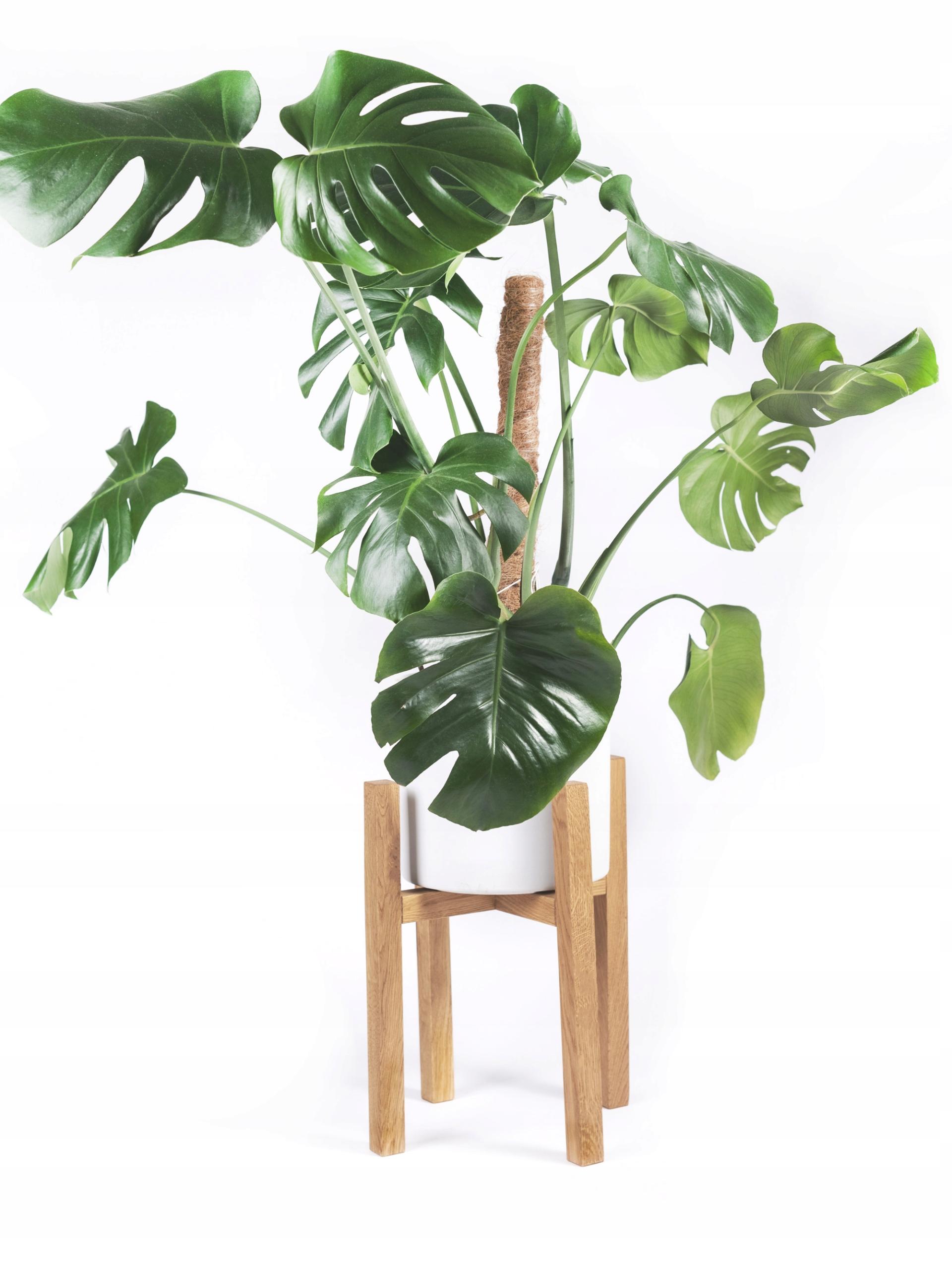 Retro drevené kvetina stand vázy 35 CM