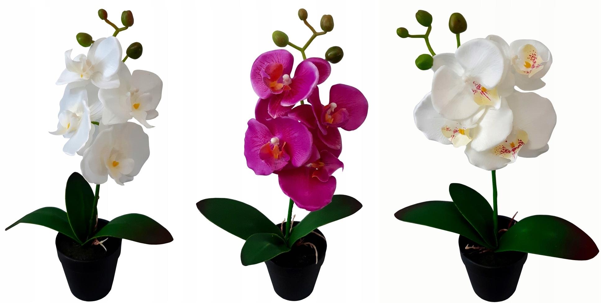 STORCZYK SZTUCZNY storczyki kwiat ORCHIDEA 38cm