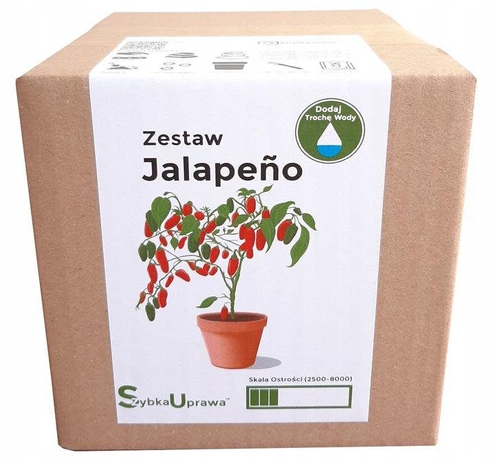 Zestaw do Uprawy Papryka Chili Jalapeno - papryki