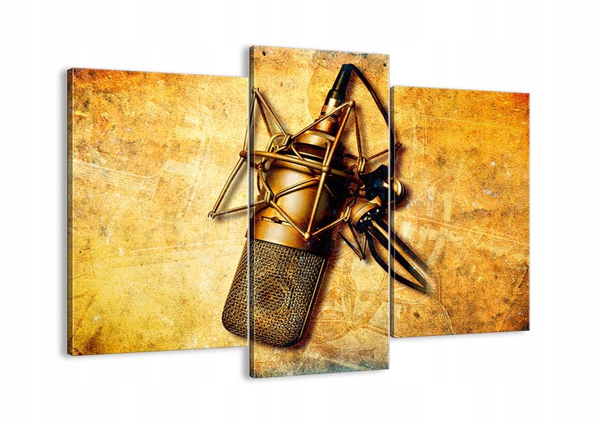 Maľovanie na plátno Retro Mikrofón CB130x100-0525
