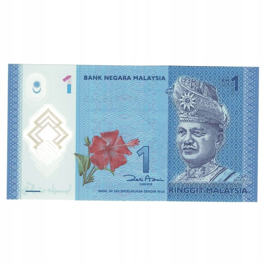 Банкнота, Малайзия, 1 ринггит, без даты (1998), UNC (6