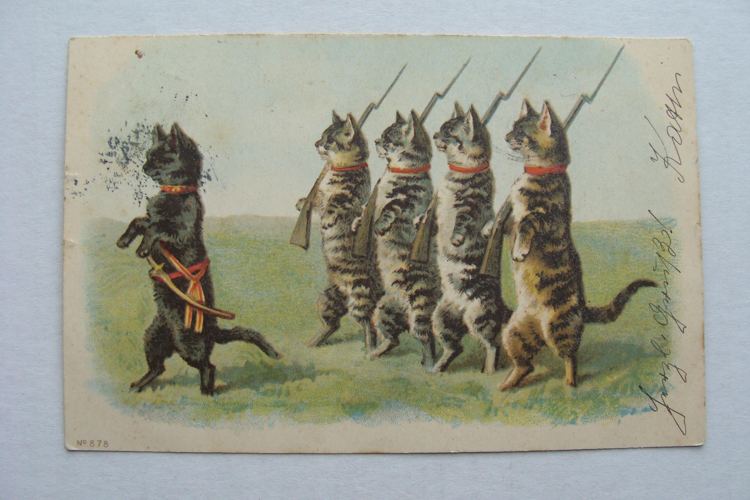 FUNNY CATS CAT KOTIE ARMY prew. ОТКРЫТКА