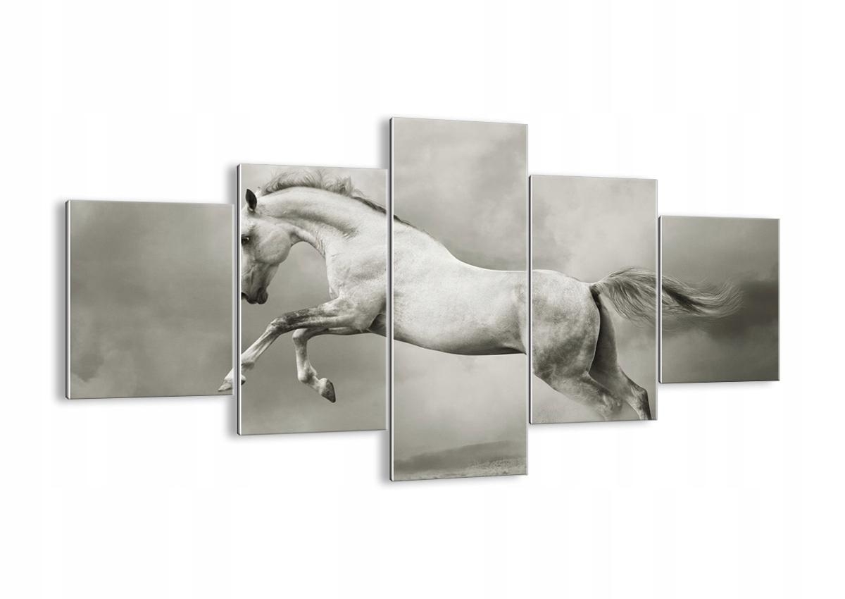 Sklenený obrázok koňa zviera GEA125x70-3542