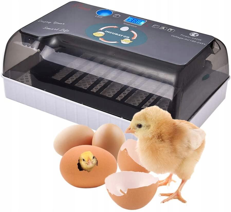 Инкубатор 12 яиц Постоянная температура Автоматическая