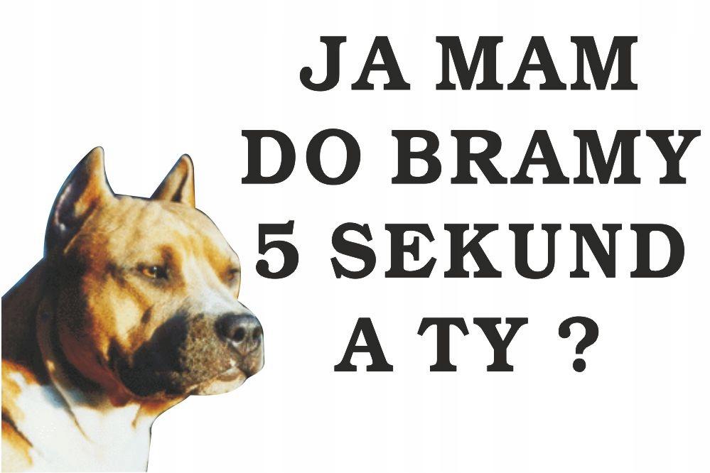 Tabliczka Pies Ja Mam Do Bramy 5s.ATY 60x40cm#32