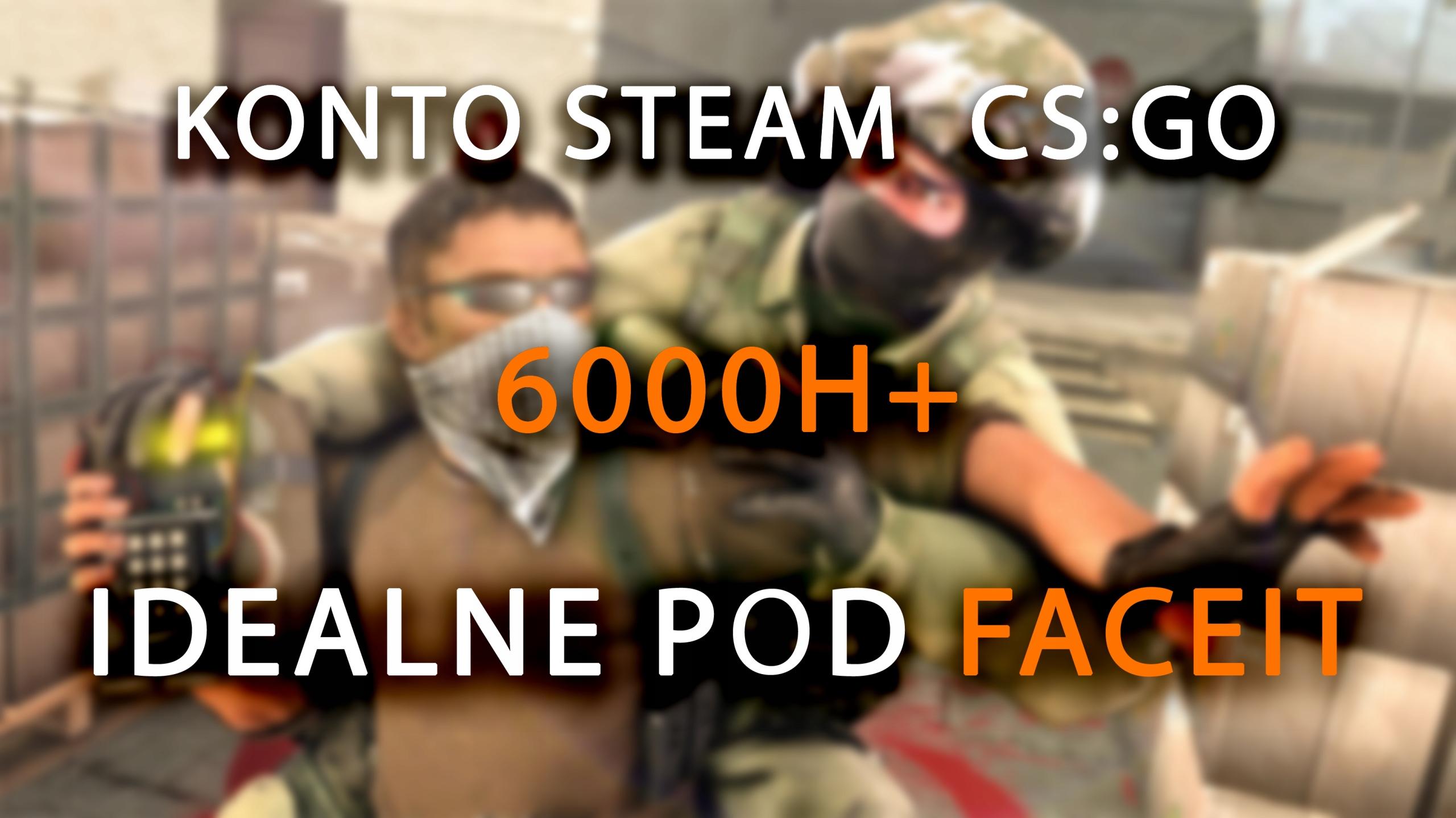Konto Cs Go 6000h Csgo Faceit Godziny 10093897677 Allegro Pl