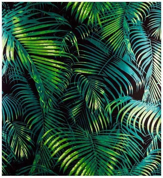 Tapeta winylowa na ścianę liście monstery palmy