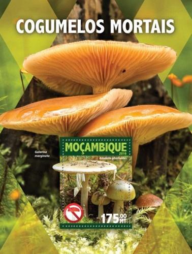 Grzyby trujące flora Mozambik blok #07MOZ16104b