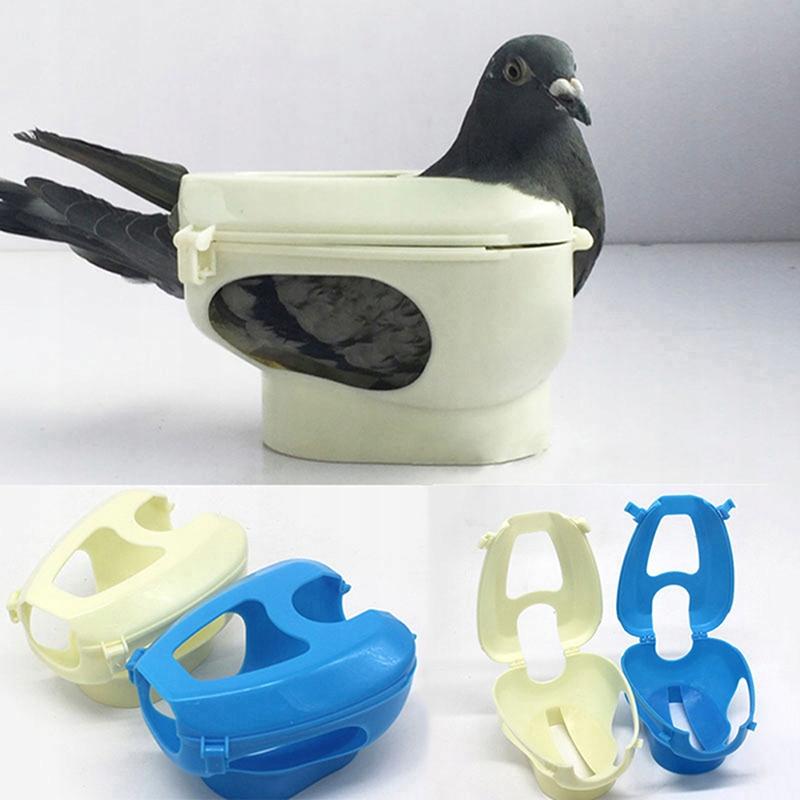 Держатель голубя-переноски для кормления медикаментов