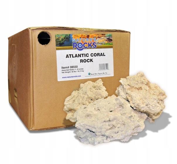 Príroda je Oceán Base Rock 18,17 kg Skalného útesu