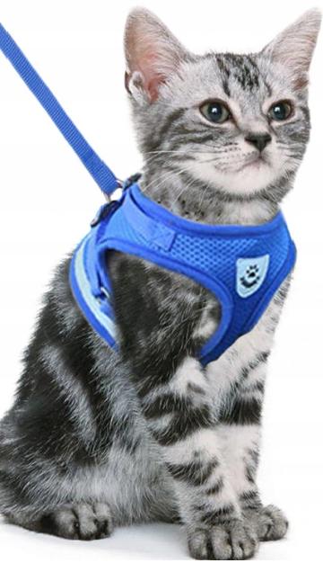 Ремень без давления для CAT DOG XS + LEASH REFLECTIVE