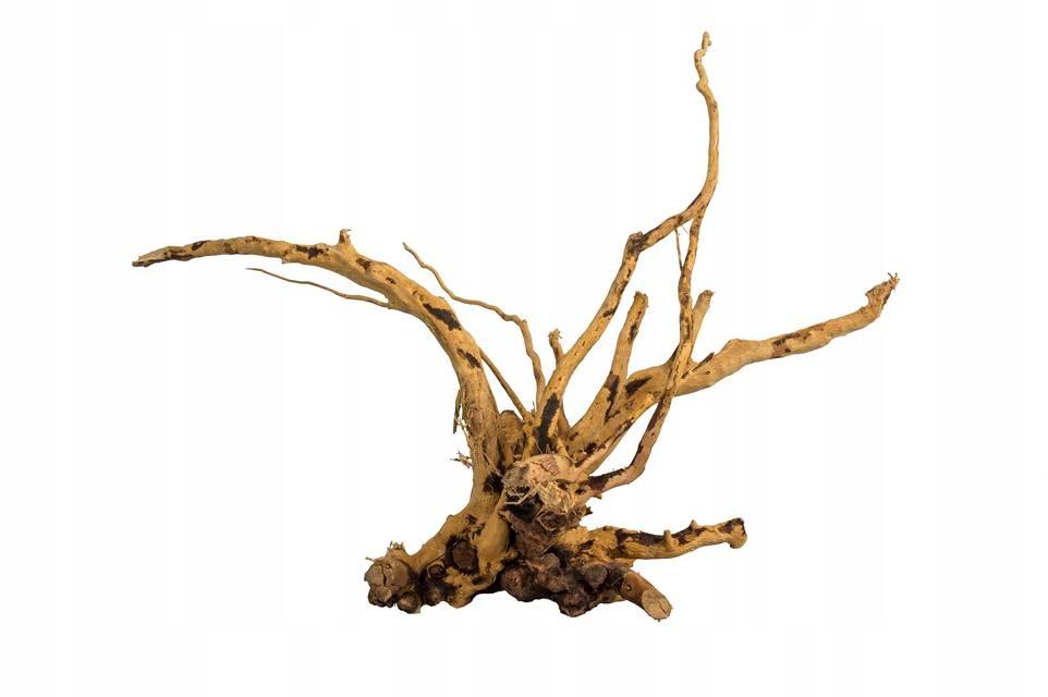 ProGrow Red Moor Wood Nano XS korzeń 10-20cm