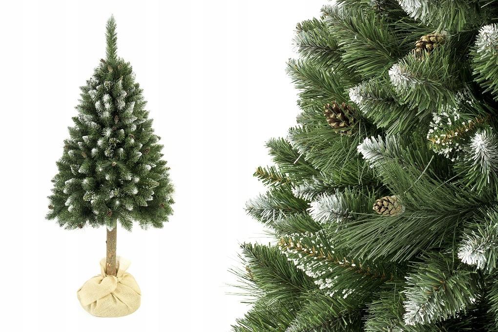 NA TRUBE vianočný stromček Diamond Pine s kužeľmi 160 cm