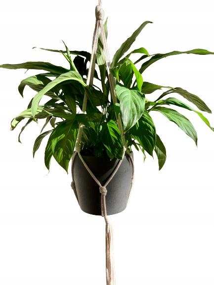 Подвесная подставка для растений, плетеная шнурком, стиль БОХО