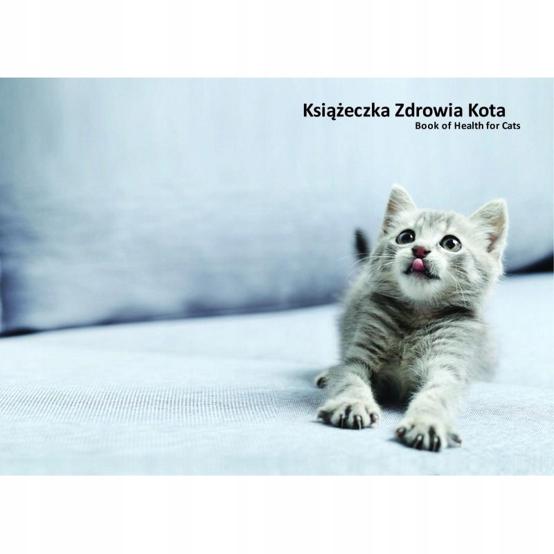 Książeczka zdrowia kota popielate kociątko