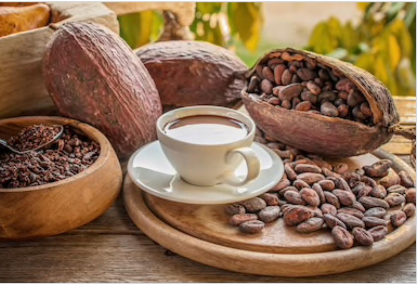 Церемониальные капли какао прямиком из Колумбии 500 гр