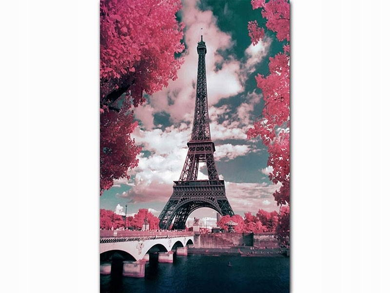 Образ Картина по номерам Эйфелева башня S008
