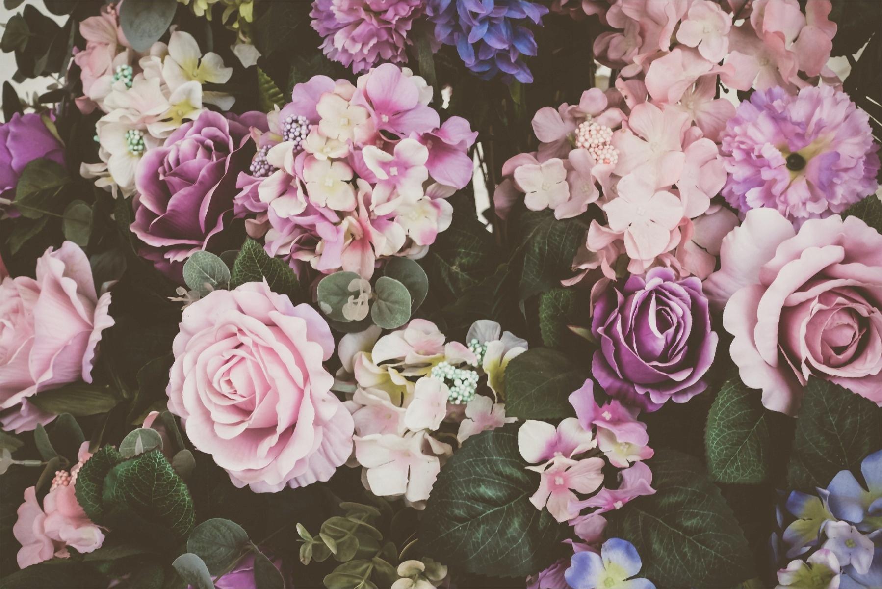Fototapeta vinobranie kytice kvetov 300x210