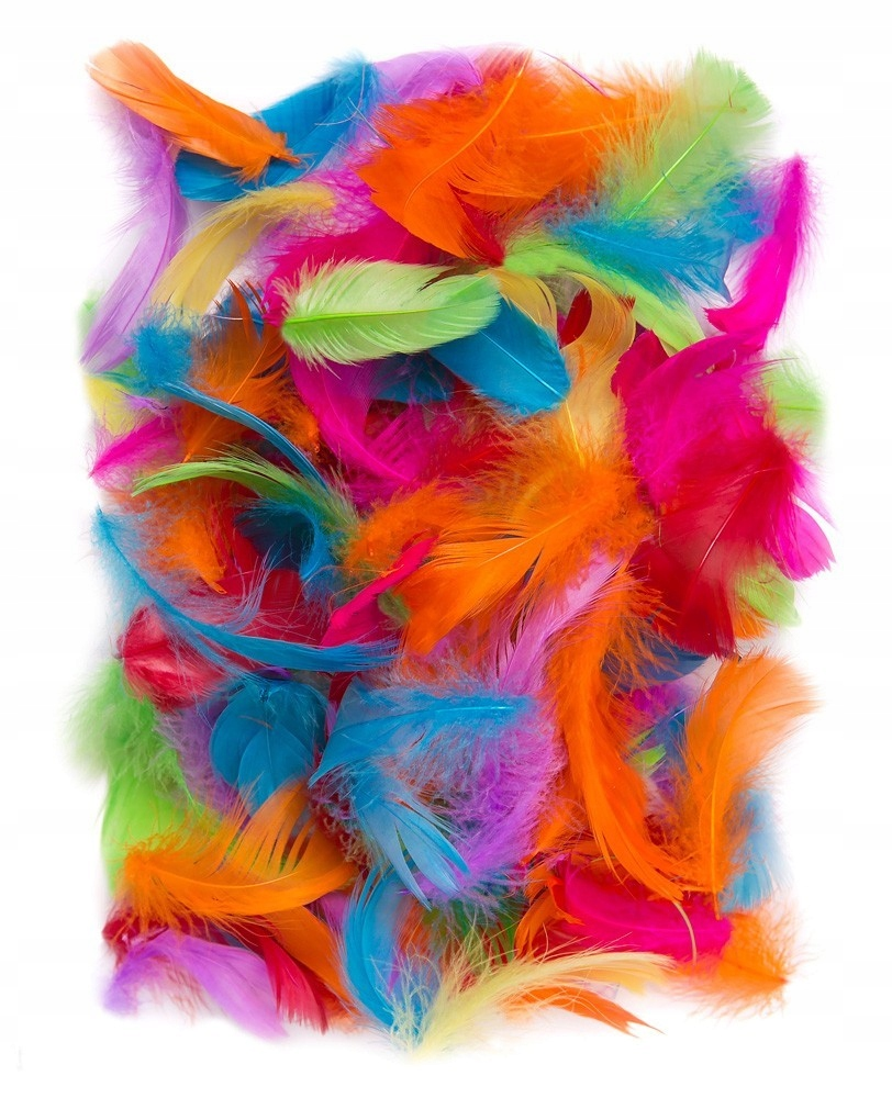 Piórka dekoracyjne, kolorowe - brights, 10 g