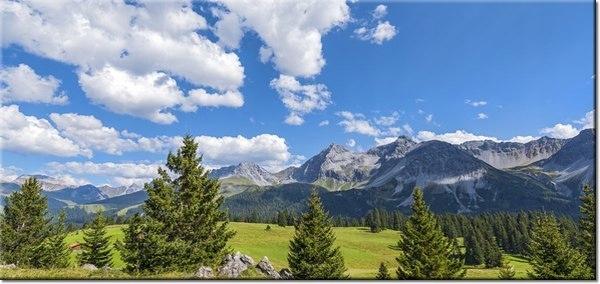 115cm 55cm Obraz ścienny Widok Alpy Tambako The Ja