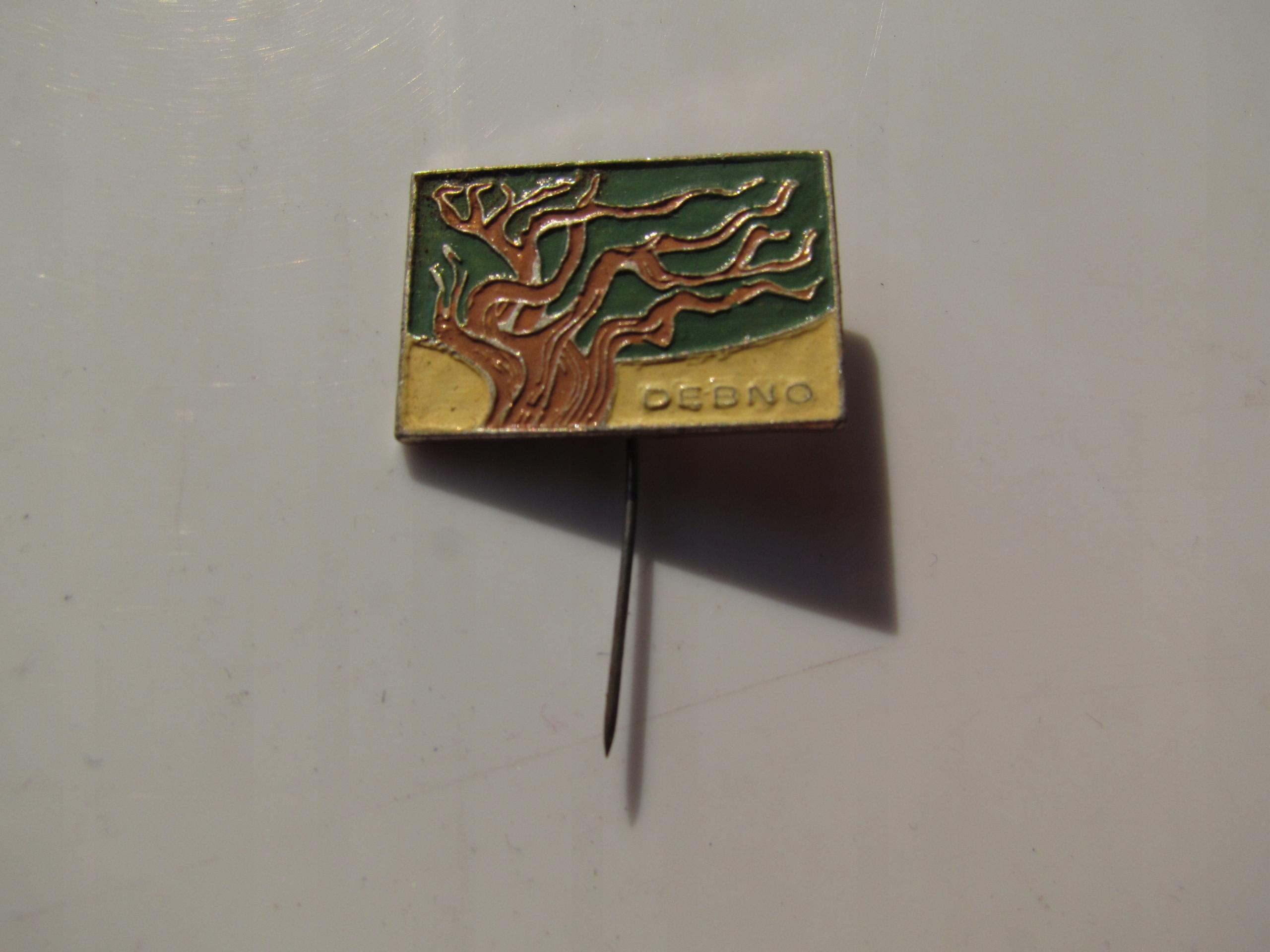 Przypinka DĘBNO Wpinka Przywieszka odznaka emalia