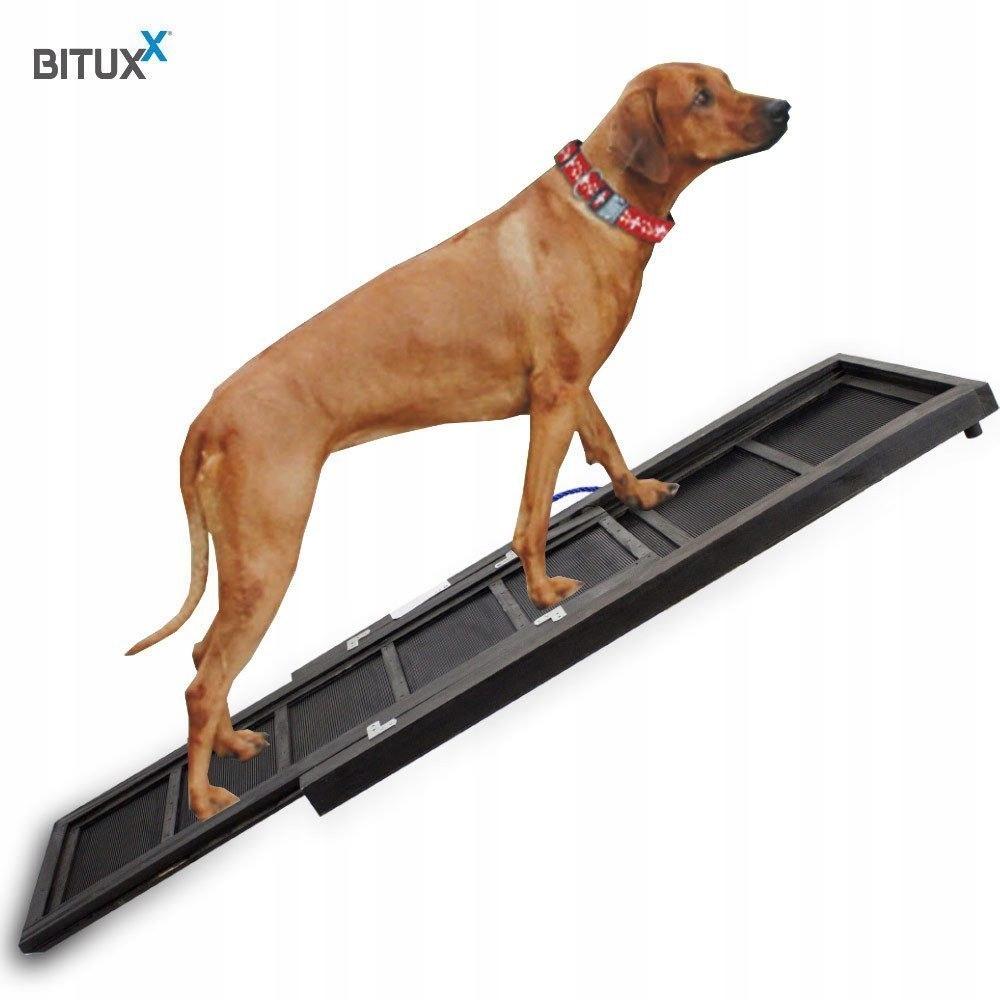 Rampa kładka podest schody drabinka dla psa