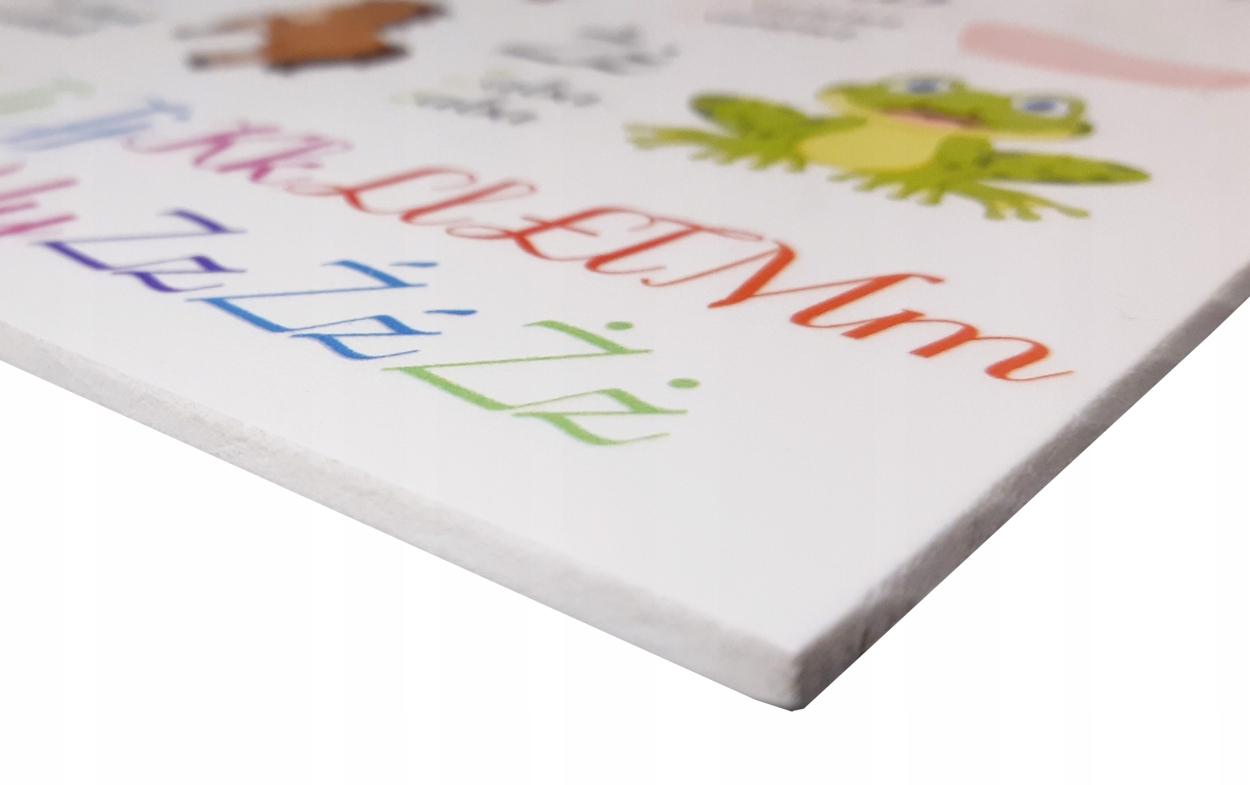 Duża kolorowa tablica mapa świata zwierzęta A3 Kod producenta Kolorowa-tablica-mapa-swiata-A3