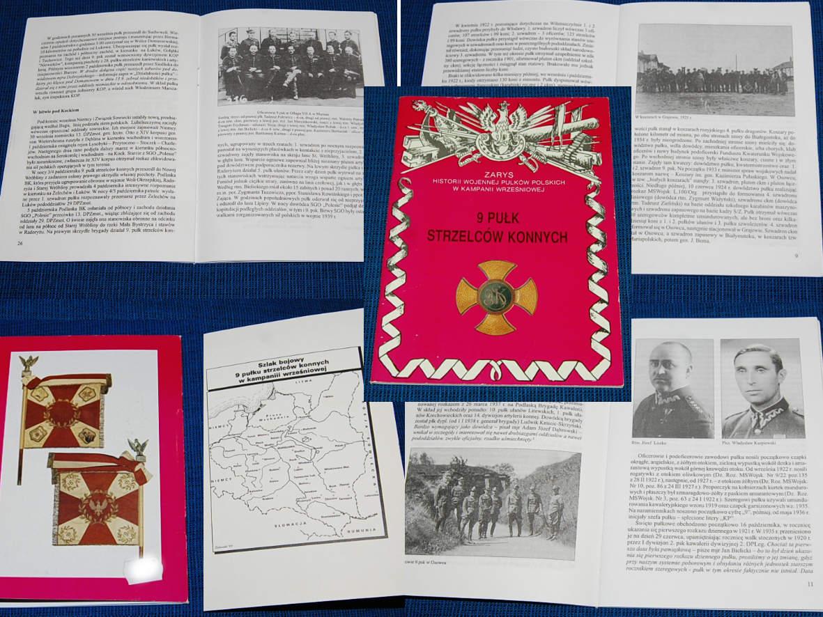 9-й полк конных стрелков генерал К. Пуласки '