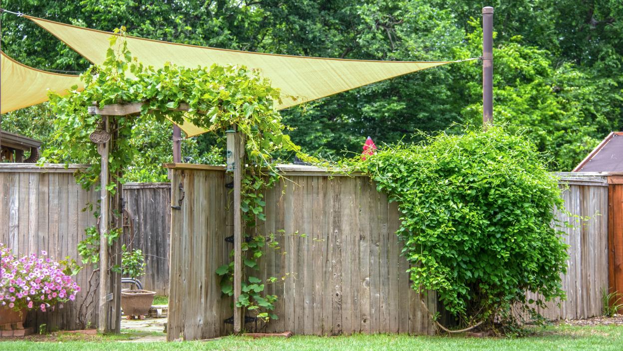 Żagiel przeciwsłoneczny – czyli jak zacienić rabatę?