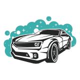 auto-detailing icon