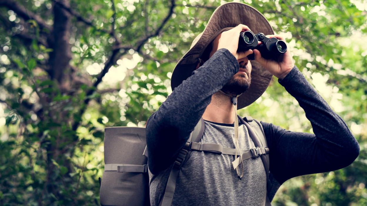 Lornetka do obserwacji ptaków – jaki sprzęt dla początkujących, a jaki dla profesjonalistów?