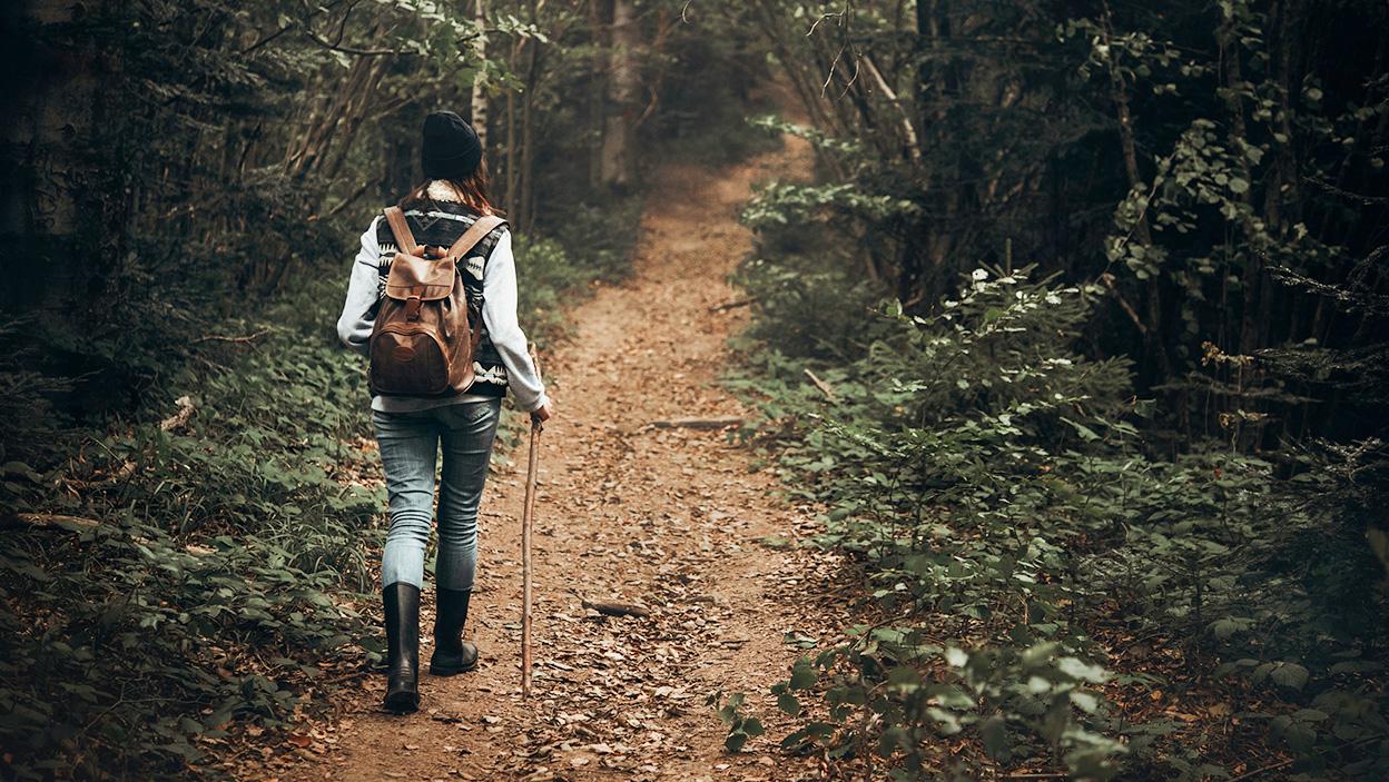 Shinrin-yoku – japońska terapia lasem dla duszy i ciała