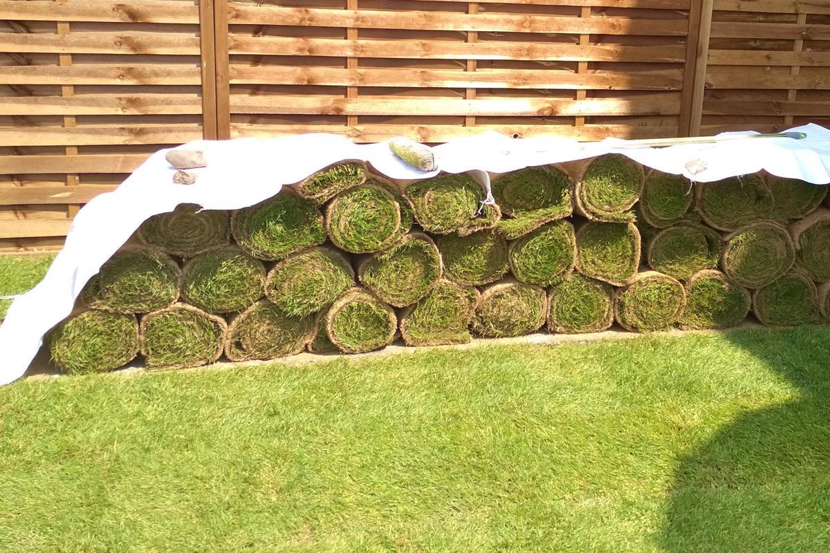 udržiavanie trávy pred rolí