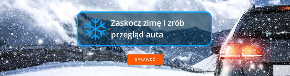 Zaskocz zimę