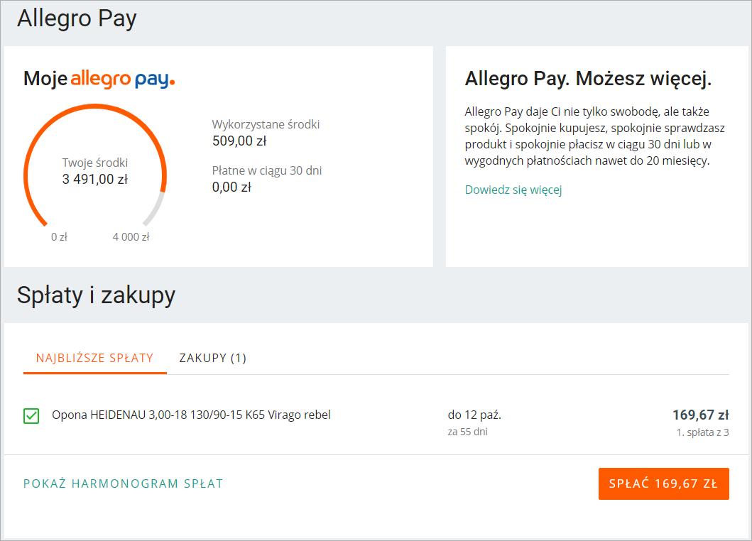 Allegro Pay Najczesciej Zadawane Pytania Pomoc Allegro