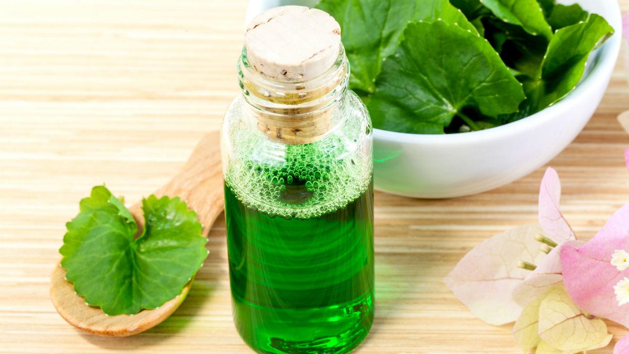 10 kosmetyków z wąkrotką azjatycką (gotu kola) do pielęgnacji skóry i włosów