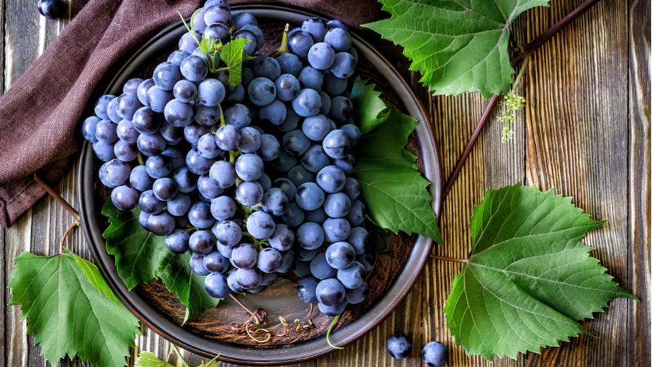 Przepis na wino z ciemnych winogron