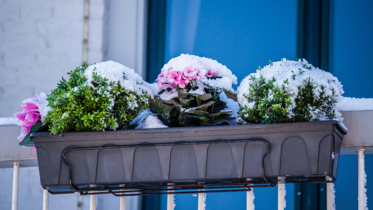 Przygotuj Swój Balkon Na Zimę Allegropl