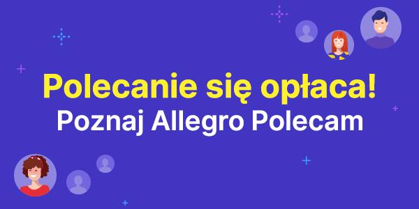Allegro Polecam polecanie się opłaca 600x300