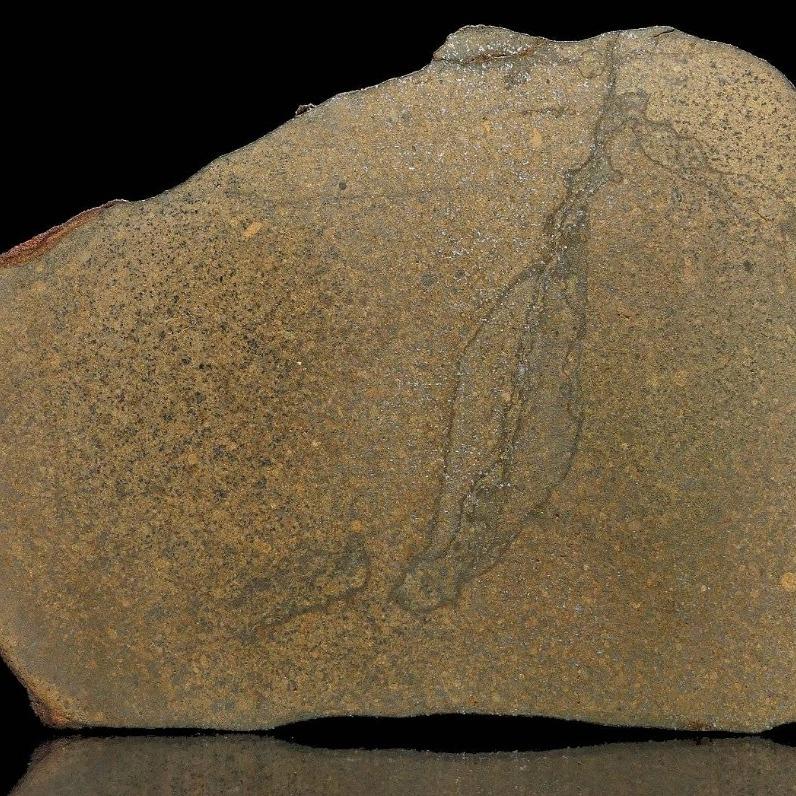 Meteoryt Pułtusk - płytka 123,5g.