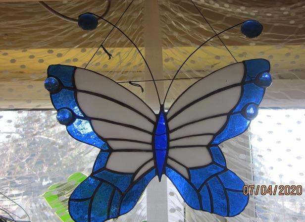 Witraż Motyl niebieski