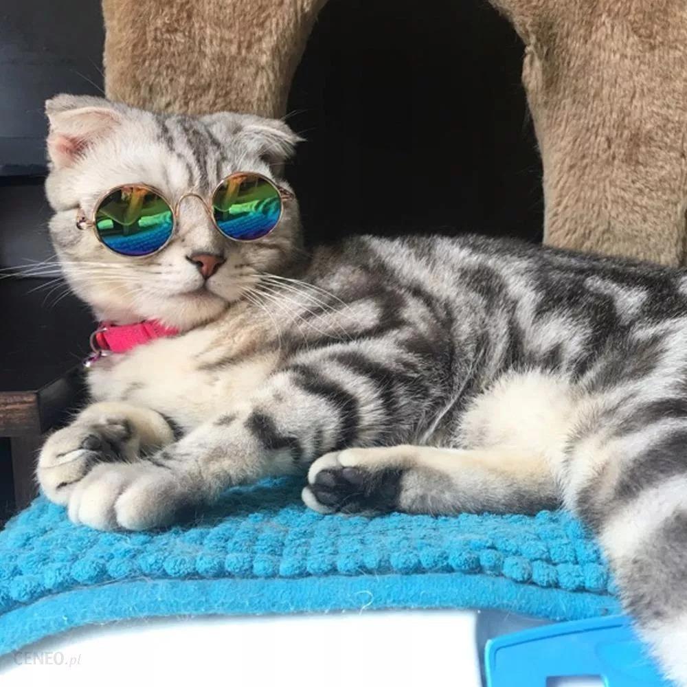 Солнцезащитные очки для собак и кошек SUMMER HIT