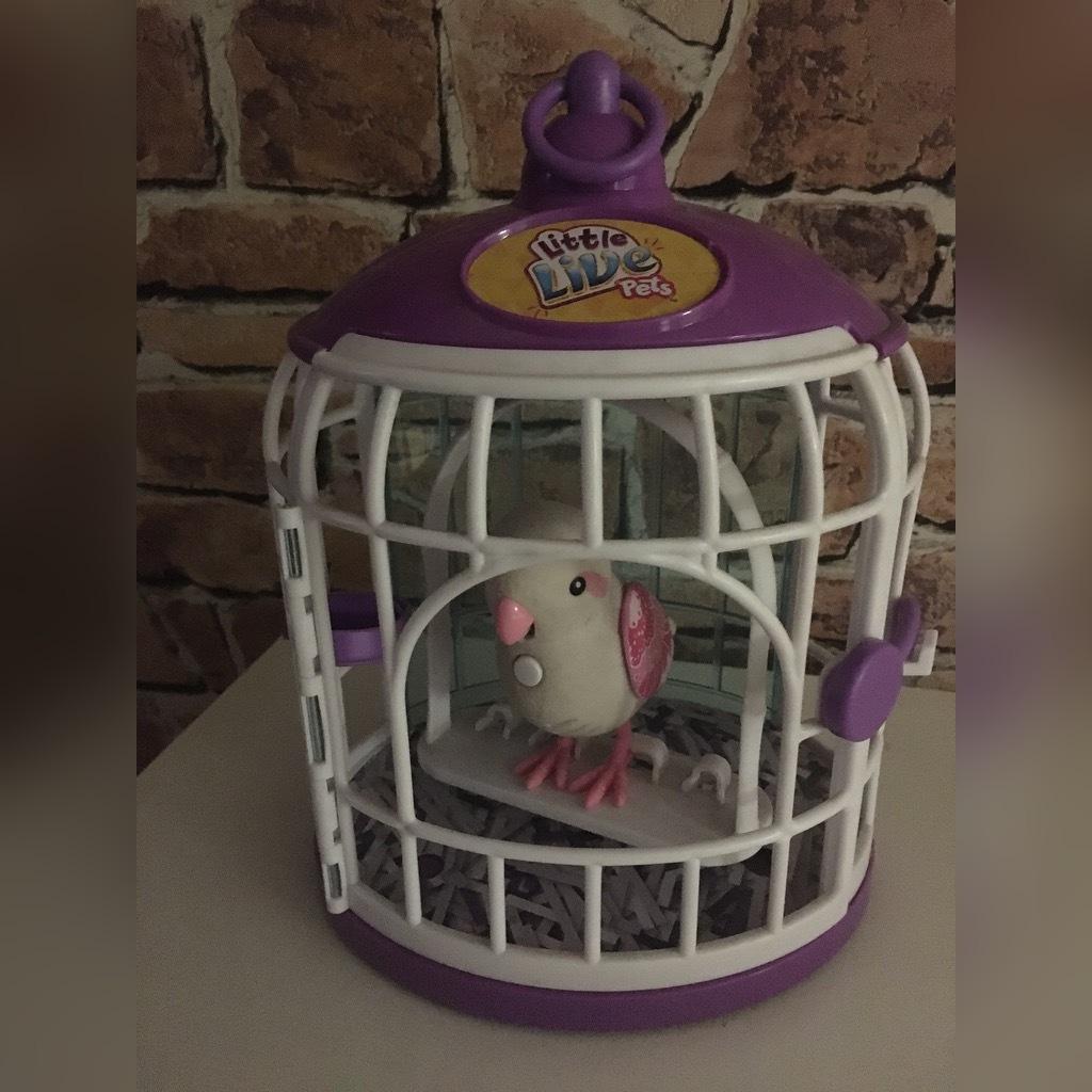 Little Live Pets Śpiewający ptaszek w klatce