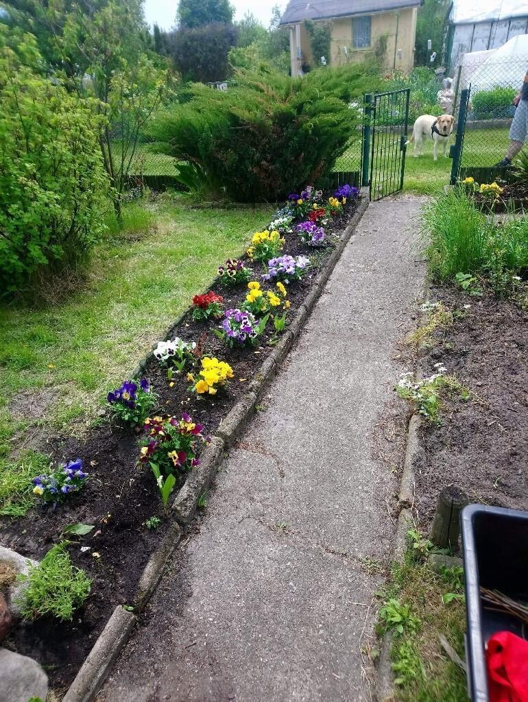Ogródek działkowy - Bełchatów