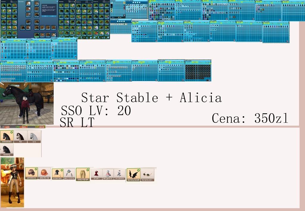 Sprzedam Konto Na Star Stable Online Kup Teraz Za 250 00 Zl Warszawa Allegro Lokalnie