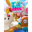 FALL GUYS ULTIMATE KNOCKOUT KONTO STEAM PC