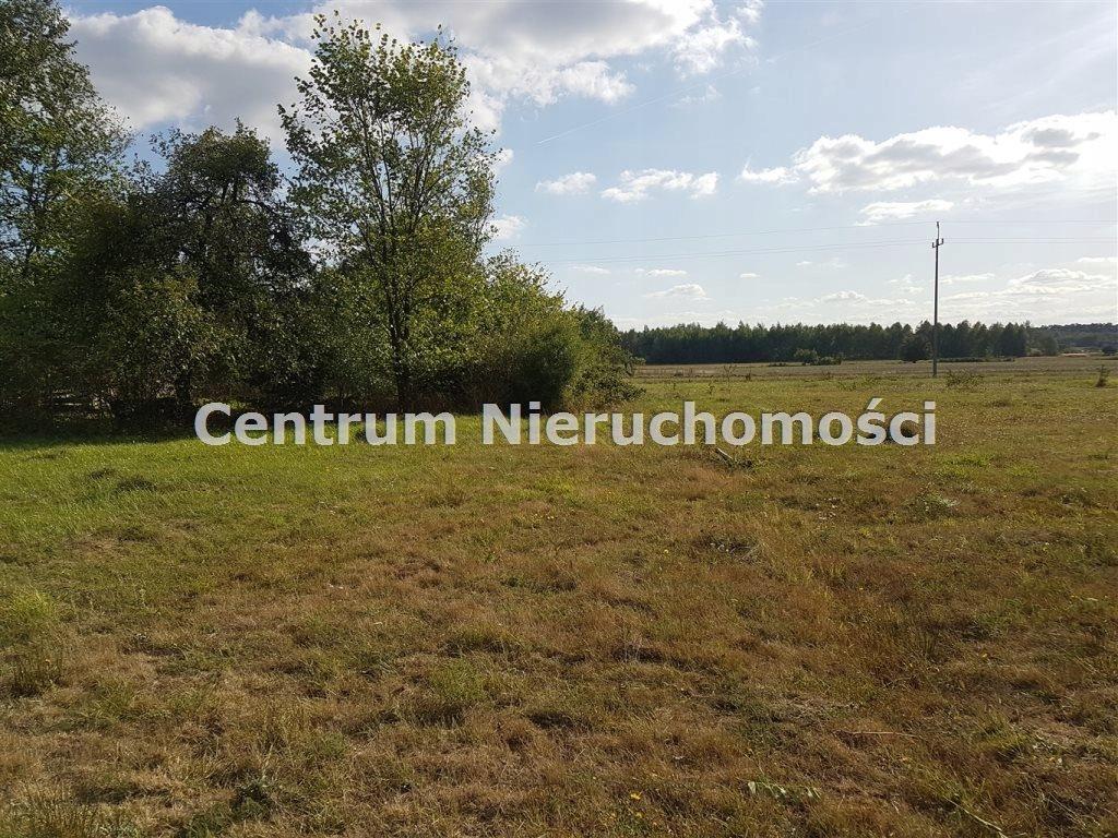 Działka, Kamostek, Sędziejowice (gm.), 5575 m²