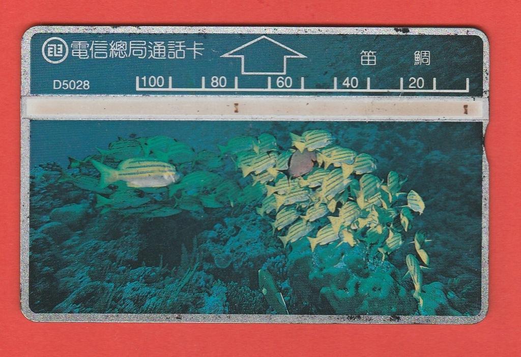 TAJWAN fauna morska ryby / D5028 / seria 507H